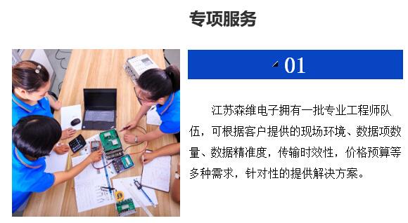 5 专项服务